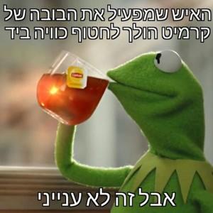 קרמיט והתה