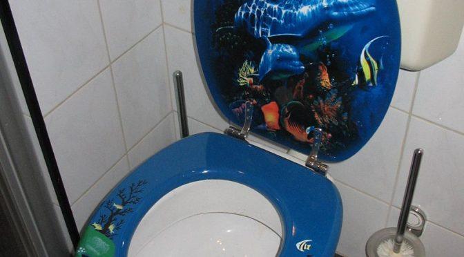 מסע לשירותים – סיפור קומי מאת דרור ניר קסטל